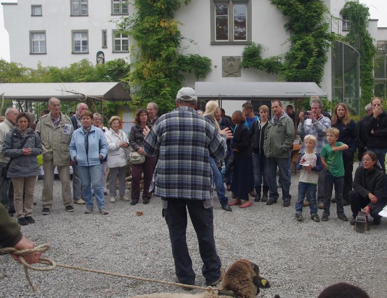 Widderschau 14
