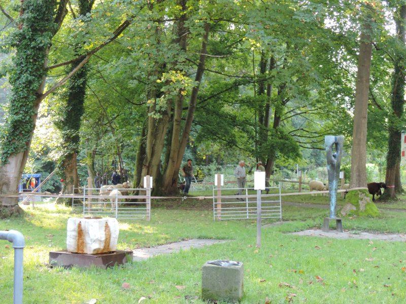 Widderschau 15 Preisig_Beinroth k 21